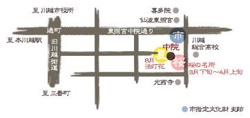 川越 中院 桜マップ
