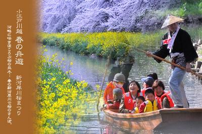 川越 新河岸川 春の舟遊
