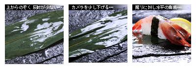 かなりピンボケ 海苔の撮り方