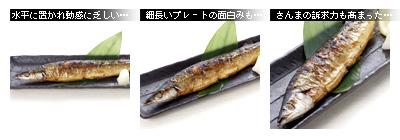 かなりピンボケ 秋刀魚の撮り方