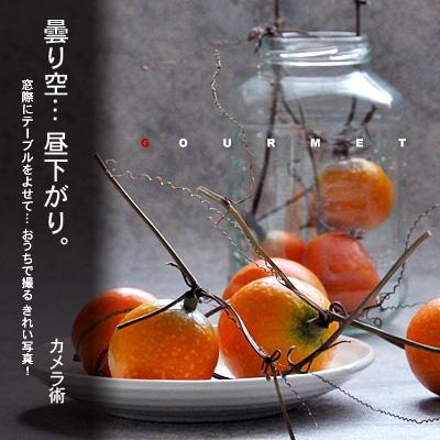 かなりピンボケ 曇り日系 昼下がりの食卓