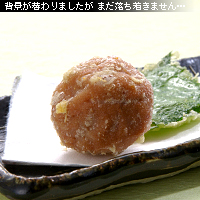 梅干しの天ぷら 作例c