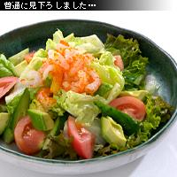 サラダ 作例a