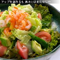 サラダ 作例b