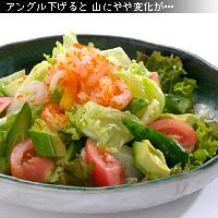 サラダ 作例c