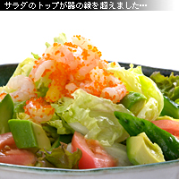 サラダ 作例f
