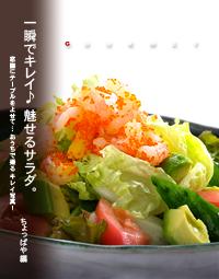 サラダ トップ写真 総集編用