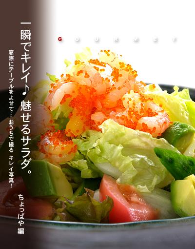 サラダ トップ作例b