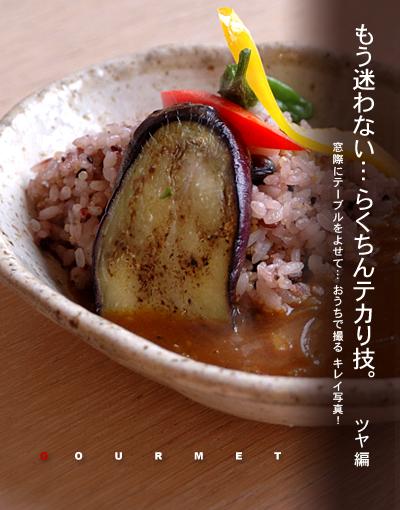 雑穀米カレー トップ写真a