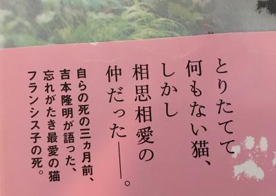 フランシス子へ_帯.jpg