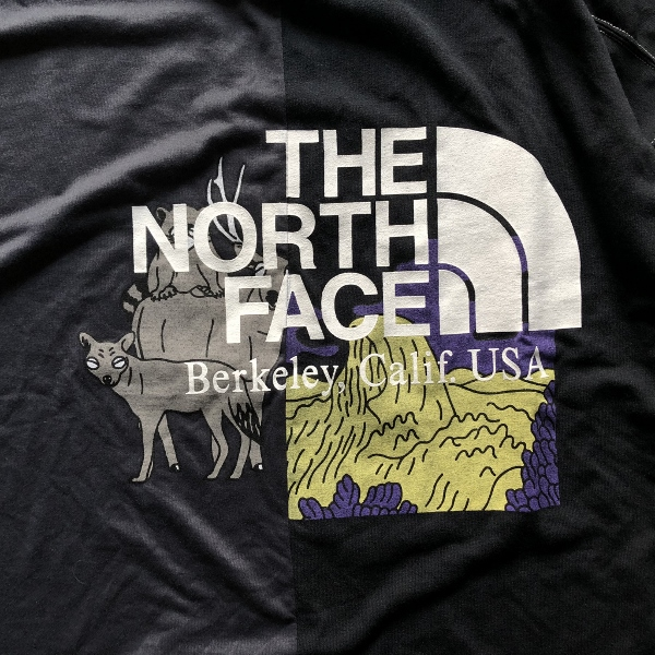 Crazy HS Logo Tee THE NORTH FACE PURPLE LABEL プリント (600x600).jpg