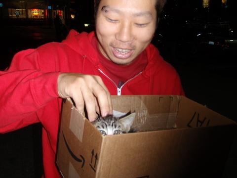 金曜日・・・・日本人のお兄さんが子猫を貰ってくれました!
