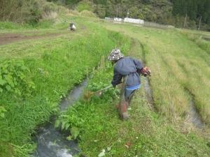 草刈り3.jpg