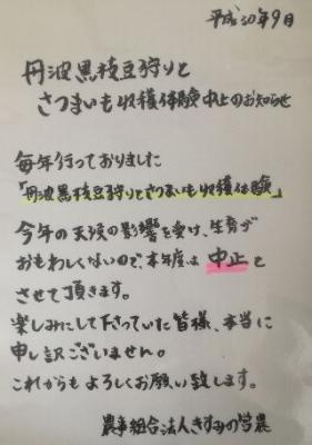 筝号晦藥��莟���������障�����篏��筝������ャ��� width=