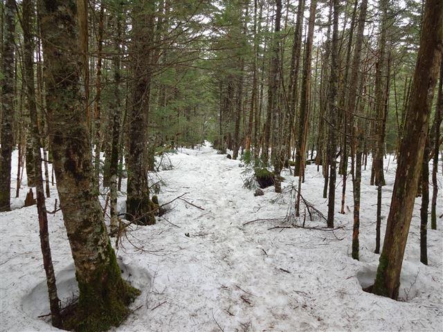 茶臼山入口