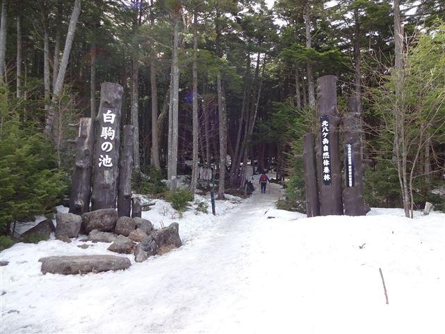 白駒池入口