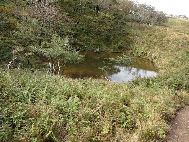 ドリーネの池