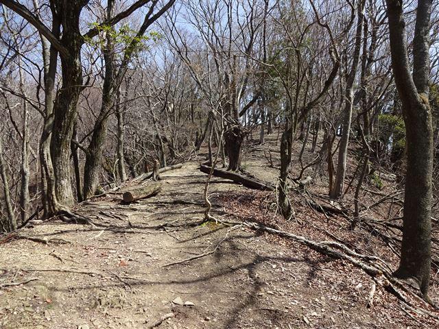 鉢伏山への登り