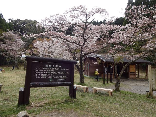 勝尾寺園地