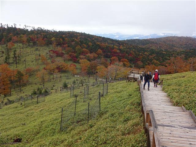 向かいの山の紅葉