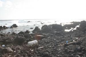 八丈島 台風後