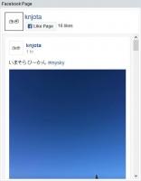 Facebook Social plugin