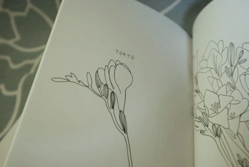 yukoyamamoto PLANTS