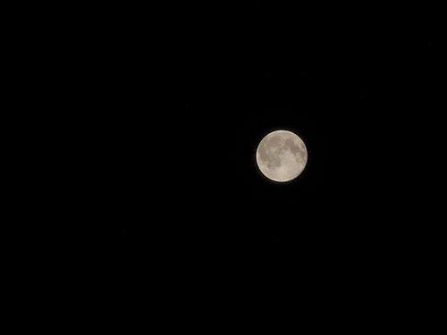 FBで話題の満月写真、私も撮ってみたよ。