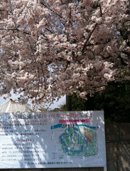 さくら2011大阪城公園v2