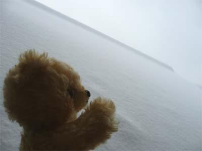 始めて見る沢山の雪