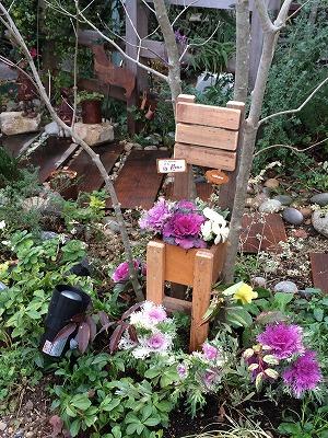 大空のくも お庭 ハボタン 寄植え.jpg