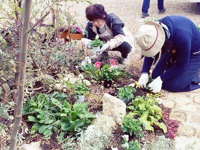 大空のくも 冬のお庭 植替え2.jpg