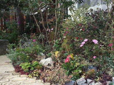 大空のくも お庭1.jpg