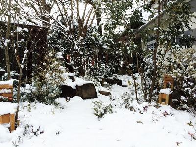 soranokumo 大空のくも 庭入口.jpg