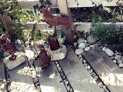 #大空のくも#ころころの庭#コブル.jpg