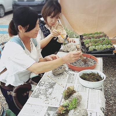 #soranokumo#大空のくも#おにわカフェ#ワークショップ#多肉寄せ植え.jpg