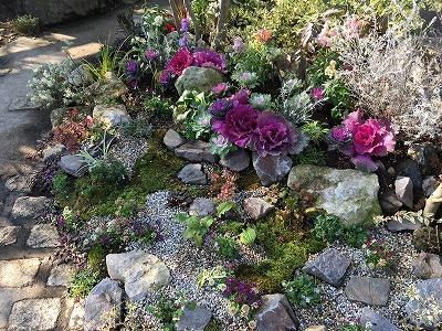 #大空のくも #soranokumo #冬の庭#植替え #after5.jpg