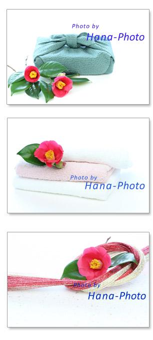 赤い椿 椿の花 椿 つばき ツバキ タオル 風呂敷 風呂敷包み 水引 和 春 赤