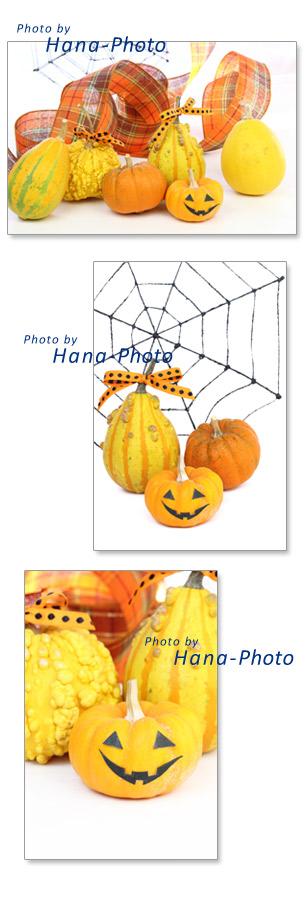 ハロウィン ハロウイン カボチャ ペポカボチャ オモチャカボチャ 収穫祭 リボン 蜘蛛の巣 チェック かぼちゃ 南瓜 オレンジ色