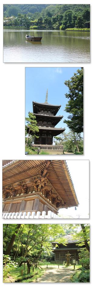 三溪園 横浜 三重塔 旧東慶寺仏殿 重要文化財 大池
