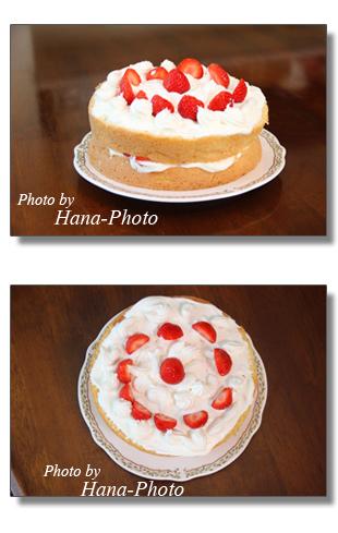 ケーキ イチゴ スポンジケーキ 亭主が作ったケーキ 手作り