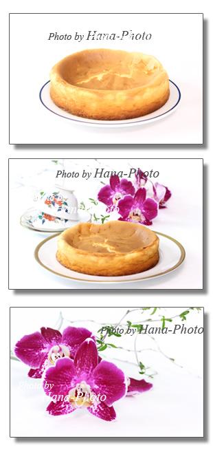 チーズスフレケーキ チーズケーキ スフレ 胡蝶蘭 ファレノプシス 洋菓子 スイーツ お菓子 ケーキ 出来立て 手作り