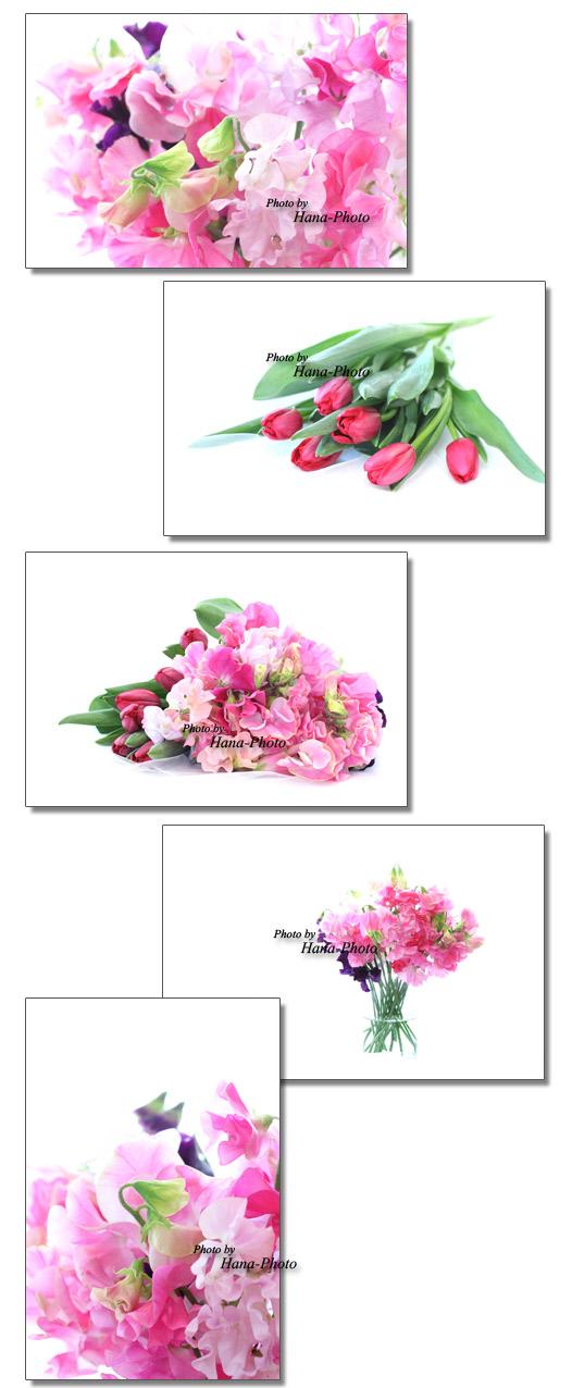 スイトピー スイートピー パステルカラー チューリップ 赤 春 春の花 花束 ブーケ