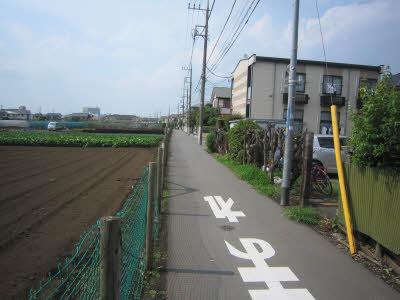 blog_IMG_0099.JPG