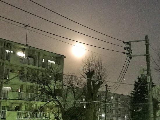 スーパーブルーブラッドムーンになる直前の月(18時ごろ)