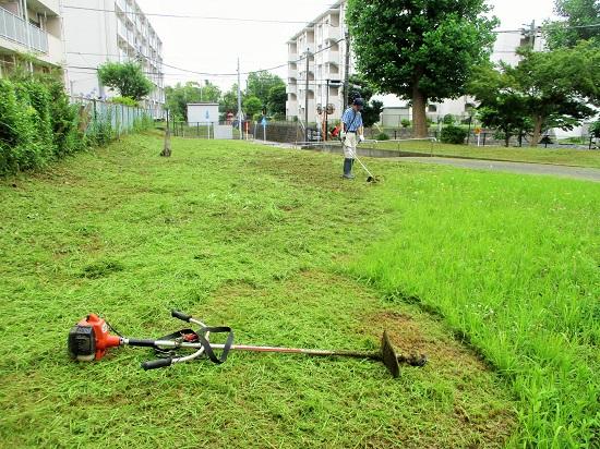 2019年6月23日(日)草刈(16棟)を行いました。