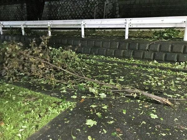 2019年10月12日(土)台風19号がやってきました…