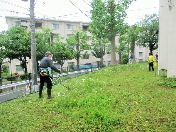 2020年5月21日(木)第1回目の草刈を行いました。