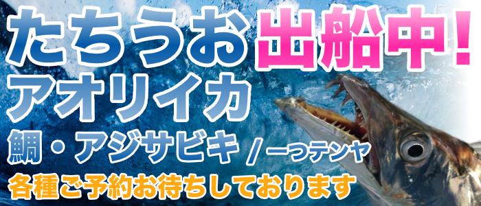 太刀魚出船、アオリイカ出船ご予約受付中!!