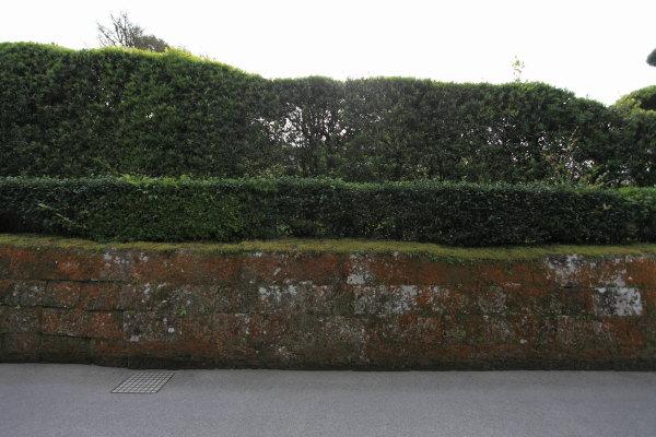 武家屋敷石塀
